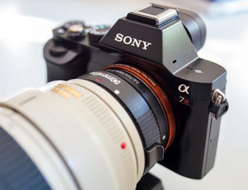 Canon vs. Sony | Ein Praxis Erfahrungsbericht und Test