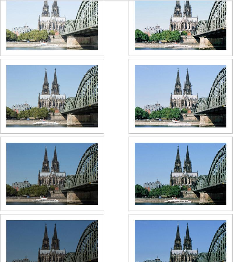 Analogfotografie und Digitalfotograife Vergleich